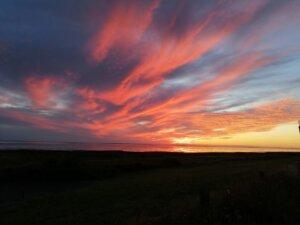 vild solnedgang